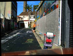 wm47_sydney_34 (WM47) Tags: art beach bondi skyline zoo graffiti coconut sydney australia koala harborbridge amaze beastman streeetart horphe ontre tagspalmtrees