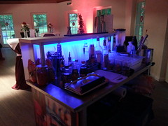 "Unser Model von Angebot 1 - kleine mobile Cocktailbar • <a style=""font-size:0.8em;"" href=""http://www.flickr.com/photos/69233503@N08/8922059000/"" target=""_blank"">View on Flickr</a>"