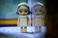 Doll Reflected