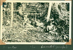 kozer_negritos_in_the_fores (American Defenders of Bataan and Corregidor) Tags: war wwii prisoners