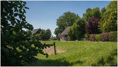Dussendijk-Korn (John Riper) Tags: trees summer farmhouse rural john landscape flood elisabeth brabant noord dussen werkendam johnr 1421 50d 1461 riper langstraat johnriper elisabethsvloed