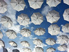Come Rain Or Come Shine (Marco Di Fabio) Tags: light sky italy sun white roma art blanco luz sol rain shopping lluvia italia nuvole shine arte artistic centro center commerciale images romano ciel cielo installation nubes getty artistica sole umbrellas onsale pioggia paraguas bianco soe outlet luce castel gettyimages lazio artistico centrocommerciale instalacion cluods ombrelli haroldarlen designeroutlet installazione johnnymercer comerainorcomeshine castelromano installazioneartistica truene artisticinstallation instalacionartistica mygearandme mygearandmepremium mygearandmebronze mygearandmesilver mygearandmegold mygearandmeplatinum mygearandmediamond shippongcentre