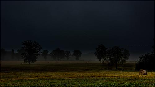Entre lumière et ténèbres - #DH425