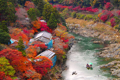 Arashiyama () () Tags: autumn fall japan boats kyoto autumncolours momiji arashiyama   colourful   redleaves katsuragawa m43  katsurariver   mirrorless microfourthirds  olympusm14150mmf4056 olympusomdem5 hoshinoyakyoto