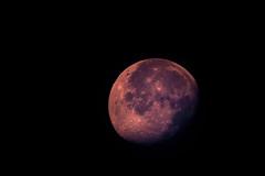 Lua (ruifo) Tags: moon luna lua lalin sky ceu céu cielo astrofotografia astrophotography nikon d810 sigma 70300mm f456 dg apo hsm macro 12 noite night noche astro solarsystem sistemasolar sigma70300mmf456dgapomacro nikond810 mexico méxico mexiko מקסיקו المكسيك 墨西哥 messico メキシコ 멕시코 мексика mexique
