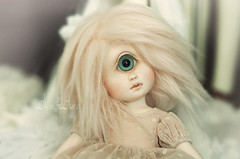 Little guest (AyuAna) Tags: ball doll bjd dollfie jointed