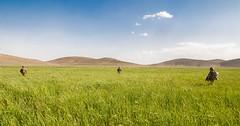 120517-A-3108M-012 (sunriftstudios) Tags: afghanistan giro ghazni 373cav