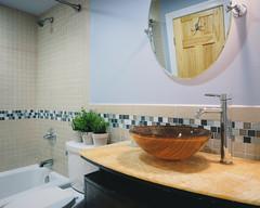 Bathroom (seikoesquepayne) Tags: film bathroom haze realestate sink interior olympus pottedplants faux f28 em1 1240mm