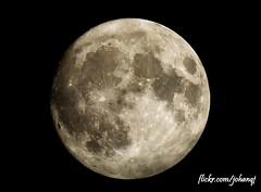 SuperMoon November 14th 2016 (johanqf) Tags: moon supermoon astronomy astro satellite satelite white dark black space universe stars craters mond crater lune lua luna solar system kuu maan gealach up mare light relief astronomia 月亮 tunglið 月 måne луна månen sky lunar super november 14 2016