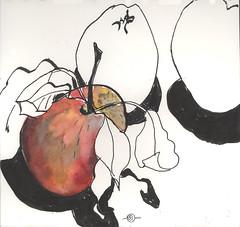 Apples he picked up on a walk (Marcia Milner-Brage) Tags: inktober inktober2016 stilllife apples calligraphy pen brushpen watercolor marciamilnerbrage