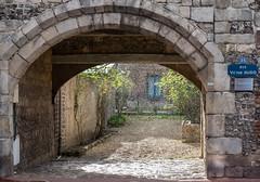 Garden with Sun and Rain (canong2fan) Tags: archway veuleslesroses fujinonxf1855mmlens arch 36 pouring france stonework sunshine ruevictorhugo fujixt1 eu rain europe architecture flints entrance gateway normandy
