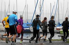 Hallwilerseelauf: Erlebnislauf ueber 21.1 km fuer Geniesser (und Segler)