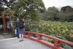 IMG_9995 (Dimitri SoyFeliz) Tags: japan shinjukuku shinjuku tokyo canon eosm eos 22mm 22mmf2 minimal minimalism minimalist newtopographics desolate outdoors hiragana