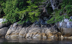 The Tide Is Low (AnyMotion) Tags: coast kste sea meer rocks felsen trees bume nature natur 2016 anymotion travel reisen ferrytrip fhrfahrt britishcolumbia canada kanada 7d2 canoneos7dmarkii ngc