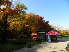 Autumn in Herstru Park, Bucharest (cod_gabriel) Tags: herstru herastrau parc park bucuresti bucureti bucharest bucarest bucareste bukarest boekarest romania roumanie romnia autumn toamna toamn parculherstru herastraupark