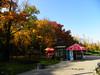 Autumn in Herăstrău Park, Bucharest (cod_gabriel) Tags: herăstrău herastrau parc park bucuresti bucureşti bucharest bucarest bucareste bukarest boekarest romania roumanie românia autumn toamna toamnă parculherăstrău herastraupark