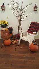 Hello Fall (SuperiorFloors) Tags: flooring hardwood floors fall vintage porch custom pumpkin mums birch