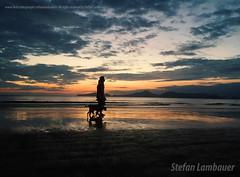 Ponta da Praia, Santos (Stefan Lambauer) Tags: sunset praia beach santos colors aparecida people dog sky sea stefanlambauer brasil brazil 2016 sãopaulo br