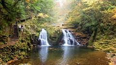 Photographer and painter (coniferconifer) Tags: akame 48falls ravine 赤目四十八滝 autumn japan 荷担滝