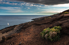 ponta de sao lorenco 3 (anthony.vairos) Tags: green red redrock ocean atlantique cloud light nikon d750 dslr fullframe pleinformat manfrotto sigma art 24mm photoshop lightroom photo photography photographie passion beautiful life boat plant sunset f14 colors madre island portugal