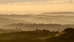 Churches (Picture South West) Tags: churches devon teignmouth mist landscape canon 7d rural dawn sunrise trees