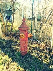 Eddy Hydrant, Bellows Falls VT (nhhydrants) Tags: bellowsfallsvt hydrant