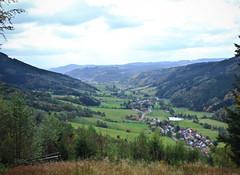 IMG_7258 (hudsonleipzig80) Tags: schwarzwald blackforest natur nature outdoor badenwrtemberg autumn herbst fall tree baum bume prechtal oberprechtal trekking wandern mountains mountain canon canoneos1200d eos1200d eos 1200d