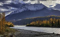 Matanuska River_King Mountain (grbenson3) Tags: alaska glennhighway matanuskariver kingmountain autumn fall color river mountain trees shining shiningexcellence