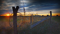 Posts and wire (wdterp) Tags: sunrise morning fence dawn clouds bales fencefriday hff