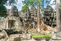 Angkor Wat, Cambodia (DitchTheMap) Tags: 2016 angkorwat architecture building cambodia jungle seasia siemreap vacation ancient angkor ankor antique archeology asia asian bayon buddhism cambodian civilization cloud empire evening exterior flickr gate green head historic history khmer landmark light monument old reap religion sculpture siem sky south stone temple thom tourism tourist travel trees unesco wat world