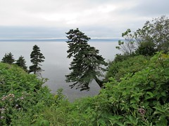 Parc National Forillon (anng48) Tags: parcnationalforillon forillonnationalpark gaspe bayofgaspe gaspepeninsula quebec qc canada