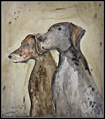 German pointers (patrick.verstappen) Tags: hunters dog painting pat paper painted fabriano a4 art animal acrylic octobre october pointers germanpointers nikon d7100 sigma photo picassa pinterest picmonkey portrait ipernity ipiccy image gingelom google flickr facebook f