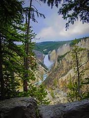 (LeseAnnKConn) Tags: lowerfalls yellowstonepark outdoor wilderness