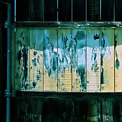 They are no ifs ands or buts for changes (Dom Guillochon) Tags: outdoor fence urban people humans decay wood metal peeling paint time life existence reality dream changes inevitable