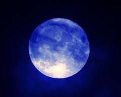 Tonight's supermoon 14.11.2016 (cityspottermus) Tags: moon space supermoon astronamy astronaut astro blue sky skies planetearth planet earth shadows shaded