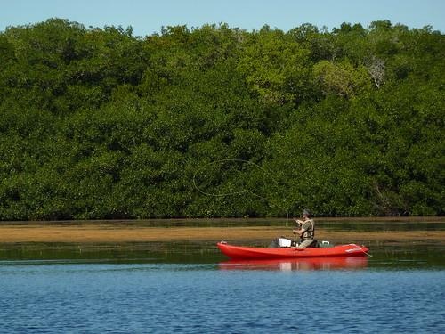 Fly fishing at Coot Bay Pond