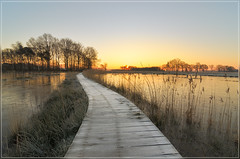 Rozenven (jos.pannekoek) Tags: roosendaal winter d7000 tokina1116mmf28 tokinaaf1116mmf28 landschap nederland brabant