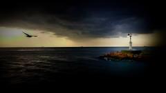 Denis feneri - Dublin (ercanpolat) Tags: sky sunset cloud bulut sea deniz seagul marti mart hdr