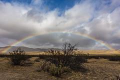 Rainbow Over Anza-Borrego Desert State Park (slworking2) Tags: julian california unitedstates us rainbow sky weather clouds desert sandiego anzaborrego anzaborregodesertstatepark