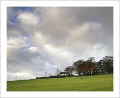 ABOVE US ONLY SKY (17) (SwaloPhoto) Tags: fujixt1 trees autumn grass field farm cottage telegraphpoles sky clouds fife saline fujinonxf23mmf14r