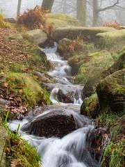tumbling stream (neil.bulman) Tags: countryside longshawestate peakdistrict nature nationalpark derbyshire longshaw fog nationaltrust longexposure water burbagebrook derbyshiredalesdistrict england unitedkingdom gb