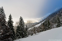 Mysterious mountains (Johan Konz) Tags: mysterious mountain climbing forest trees matt cantonglarus switzerland snow outdoor landscape mountainside blue light sky mist fog alps nikon d90