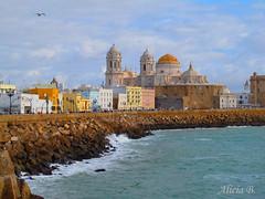 Con la catedral al fondo (Alicia B,) Tags: cadiz spain mar sea catedral paisaje landscapes