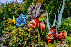 The Seas With Nemo and Friends (disneylori) Tags: theseaswithnemoandfriends findingnemo futureworld epcot waltdisneyworld disneyworld wdw disney