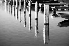 Inge Hoogendoorn (ingehoogendoorn) Tags: water haven broekoplangedijk noordholland zwartwit blackandwhite blacknwhite reflection reflectie monochrome monochroom repetition herhaling patroon pattern patronen
