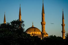 Aya Sofia (bambo_85) Tags: nikon d5100 sunset architecture istanbul outdoor ayasofia