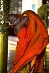 _MG_6324-le-18_04_2016_wat-thail-wattanaram-maesot-thailande-christophe-cochez-r-w (christophe cochez) Tags: thailand thailande maesot watthailwattanaram monk bonze myawadyy myanmar burma burmes birman birmanie religion travel voyage asie asia asian bouddhiste bouddhisme buddhist buddhism