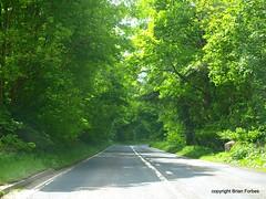Glen Farg (B4bees .(2m views)) Tags: trees nature sunshine scotland traffic perthshire highways roads hint glint countryroads glenfarg b996