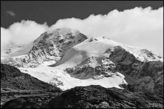 Lyskamm Orientale, 4527m (Giulio Speranza) Tags: snow alps ice neve monterosa lys alpi ghiaccio lyskamm