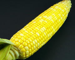 DSCF6673 (carolea2012) Tags: yellow corn vegetable